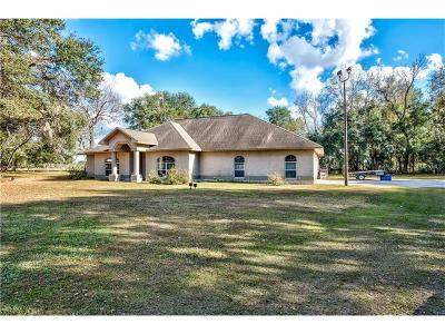 Plant City Single Family Home For Sale: 6724 Varn Road