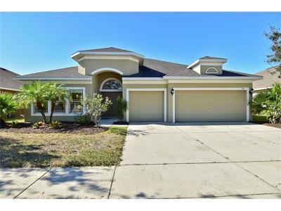 Ruskin Single Family Home For Sale: 1518 Mira Lago Circle