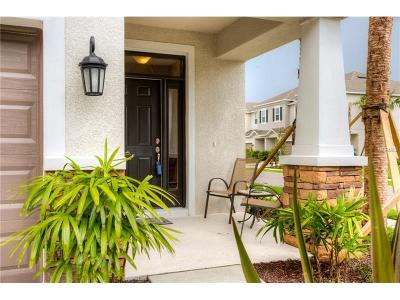 Oldsmar Townhouse For Sale: 208 Cabernet Way