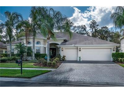 Wesley Chapel Single Family Home For Sale: 26830 Winged Elm Drive