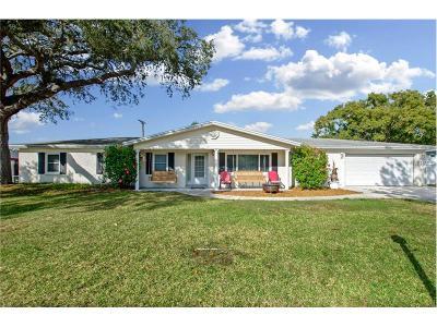 Brandon Single Family Home For Sale: 1606 Lark Lane
