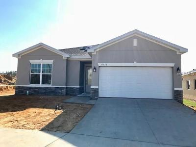 Clermont Single Family Home For Sale: 17070 Gathering Place Circle