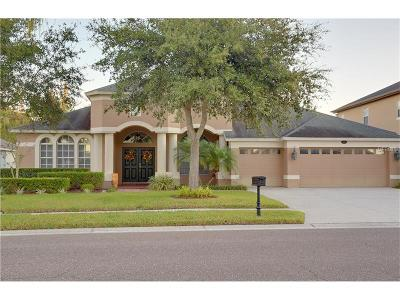 Odessa Single Family Home For Sale: 16910 Ivy Lake Drive