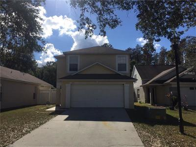 Wesley Chapel Single Family Home For Sale: 6107 Sand Key Lane