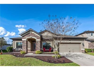Land O Lakes Single Family Home For Sale: 8504 Bluevine Sky Drive