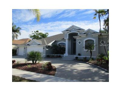 Apollo Beach Single Family Home For Sale: 904 Bunker View Drive