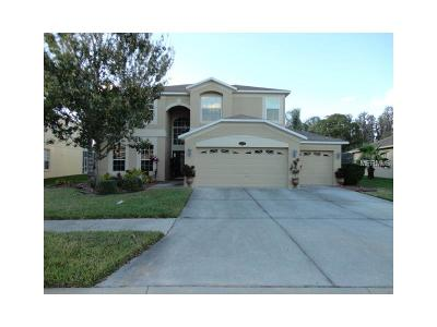 Tampa Single Family Home For Sale: 10840 Breaking Rocks Drive