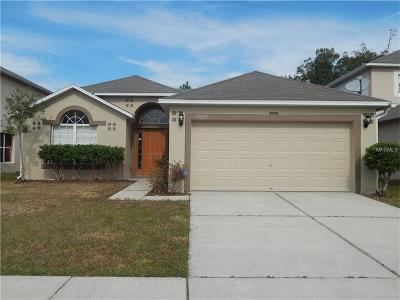 Wesley Chapel Single Family Home For Sale: 30215 Rattana Court