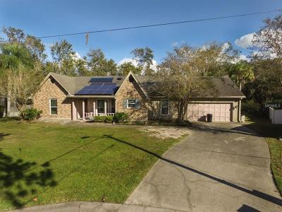 New Port Richey Single Family Home For Sale: 5943 Lantern Court