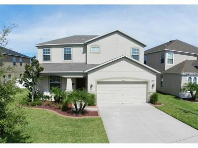 Gibsonton Single Family Home For Sale: 11536 Tangle Creek Boulevard