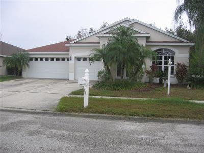 Wesley Chapel Single Family Home For Sale: 5418 Bold Venture Place