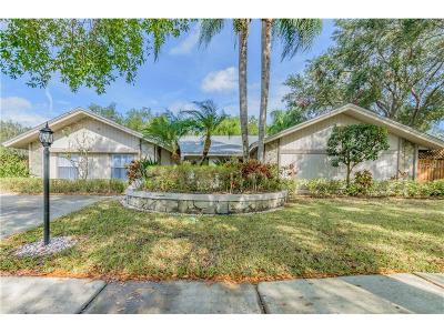 Tampa Single Family Home For Sale: 4323 Southpark Drive