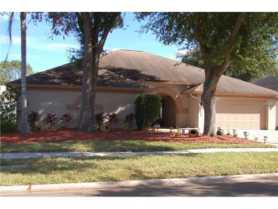 Tampa Single Family Home For Sale: 9614 Cypress Brook Road