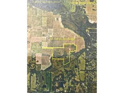 Hillsborough County Residential Lots & Land For Sale: 12215 Collins Ranch Rd
