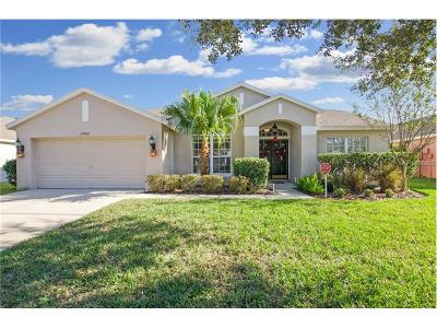 Wesley Chapel Single Family Home For Sale: 25821 Santos Way