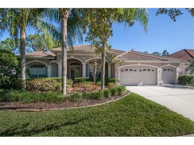 Tampa Single Family Home For Sale: 10246 Waterside Oaks Drive