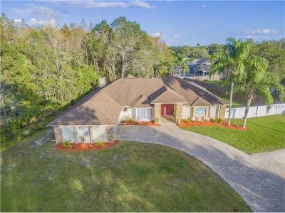 New Port Richey Single Family Home For Sale: 7130 Auburn Lane
