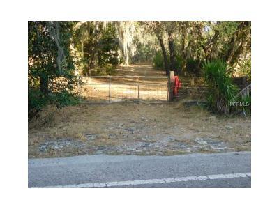 Hillsborough County Single Family Home For Sale: 15024 Carlton Lake Road