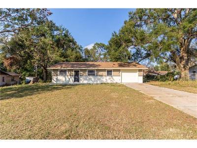 Debary Single Family Home For Sale: 36 Monroe Avenue