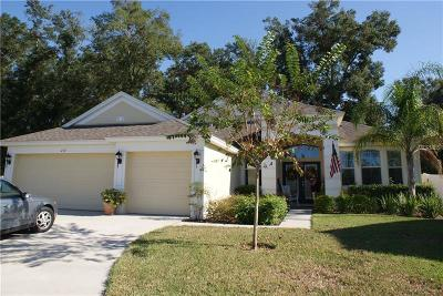 Hillsborough County Single Family Home For Sale: 217 Parsons Woods Drive