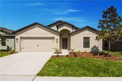 Hillsborough County, Pasco County, Pinellas County Single Family Home For Sale: 904 Wynnmere Walk Avenue