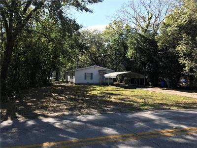 Lutz Single Family Home For Sale: 16419 Hanna Road