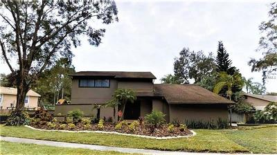 Tampa Single Family Home For Sale: 13704 Wilkes Drive