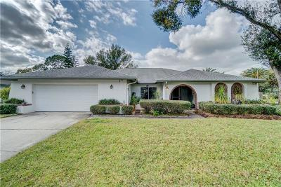 Tampa Single Family Home For Sale: 5007 Barrowe Drive