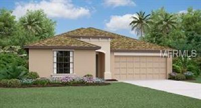 Hillsborough County, Pasco County, Pinellas County Single Family Home For Sale: 1814 Broad Winged Hawk Drive