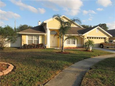 Hernando County, Hillsborough County, Pasco County, Pinellas County Single Family Home For Sale: 11302 Palm Pasture Drive