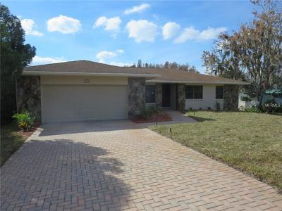 Pasco County, Hernando County Single Family Home For Sale: 2969 Lake Saxon Drive