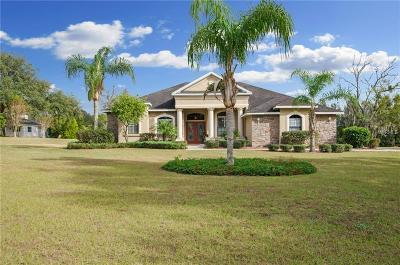 Dade City Single Family Home For Sale: 14308 Willow Run