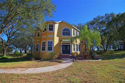 Dade City Single Family Home For Sale: 37436 Sky Ridge Circle