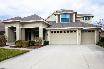 Lithia Single Family Home For Sale: 15910 Oakleaf Run Drive