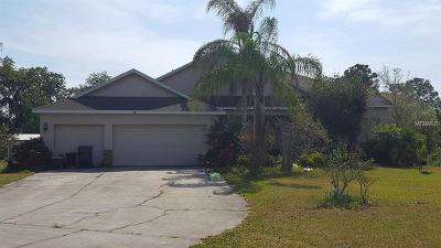 Wimauma Single Family Home For Sale: 14714 Amber Sweet Lane
