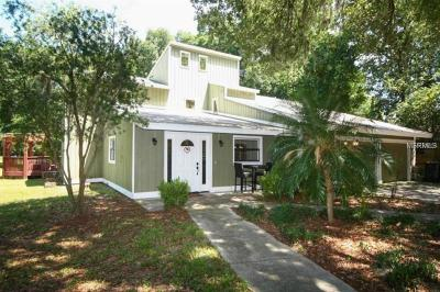Valrico Single Family Home For Sale: 217 S Valrico Road