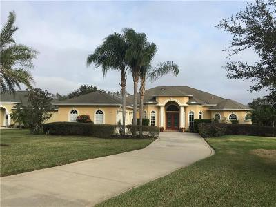 Dade City Single Family Home For Sale: 13411 Thoroughbred Drive