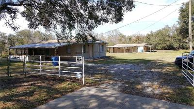 Seffner Single Family Home For Sale: 6248 Timmons Road