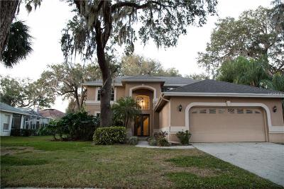 Valrico FL Single Family Home For Sale: $387,000
