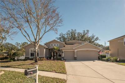 Valrico Single Family Home For Sale: 1625 Harvest Grove Court