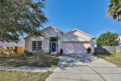 Apollo Beach Single Family Home For Sale: 125 Island Water Way