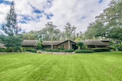 Tampa Single Family Home For Sale: 16410 Avila Boulevard