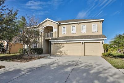 Hernando County, Hillsborough County, Pasco County, Pinellas County Single Family Home For Sale: 2618 Yukon Cliff Drive