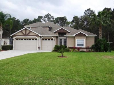 Wesley Chapel Single Family Home For Sale: 6217 Bridleford Drive