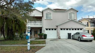 Hernando County, Hillsborough County, Pasco County, Pinellas County Single Family Home For Sale: 4237 Sandy Shores Drive