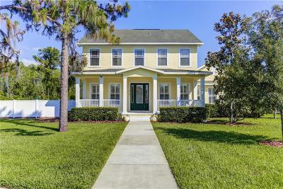 New Port Richey Single Family Home For Sale: 3638 Wiregrass Road