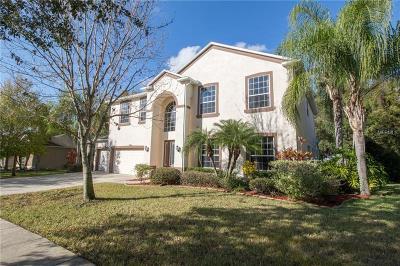 Brandon Single Family Home For Sale: 78 Camelot Ridge Drive