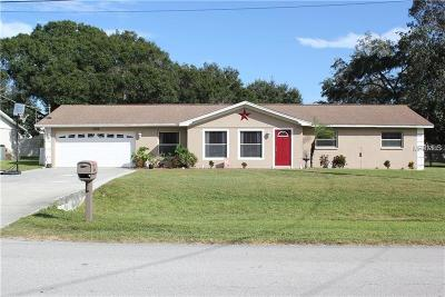 Riverview Single Family Home For Sale: 7006 Krycul Avenue