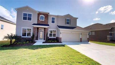 Lake County, Sumter County Single Family Home For Sale: 16410 Good Hearth Boulevard