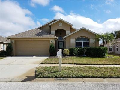 Wesley Chapel FL Single Family Home For Sale: $272,000